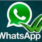 5 Ideas para Usar Whatsapp en Marketing